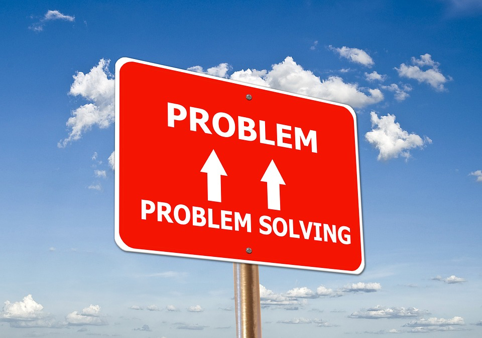 A professional deals with lots of challenges and problems, but they tackle those challenges by problem solving.