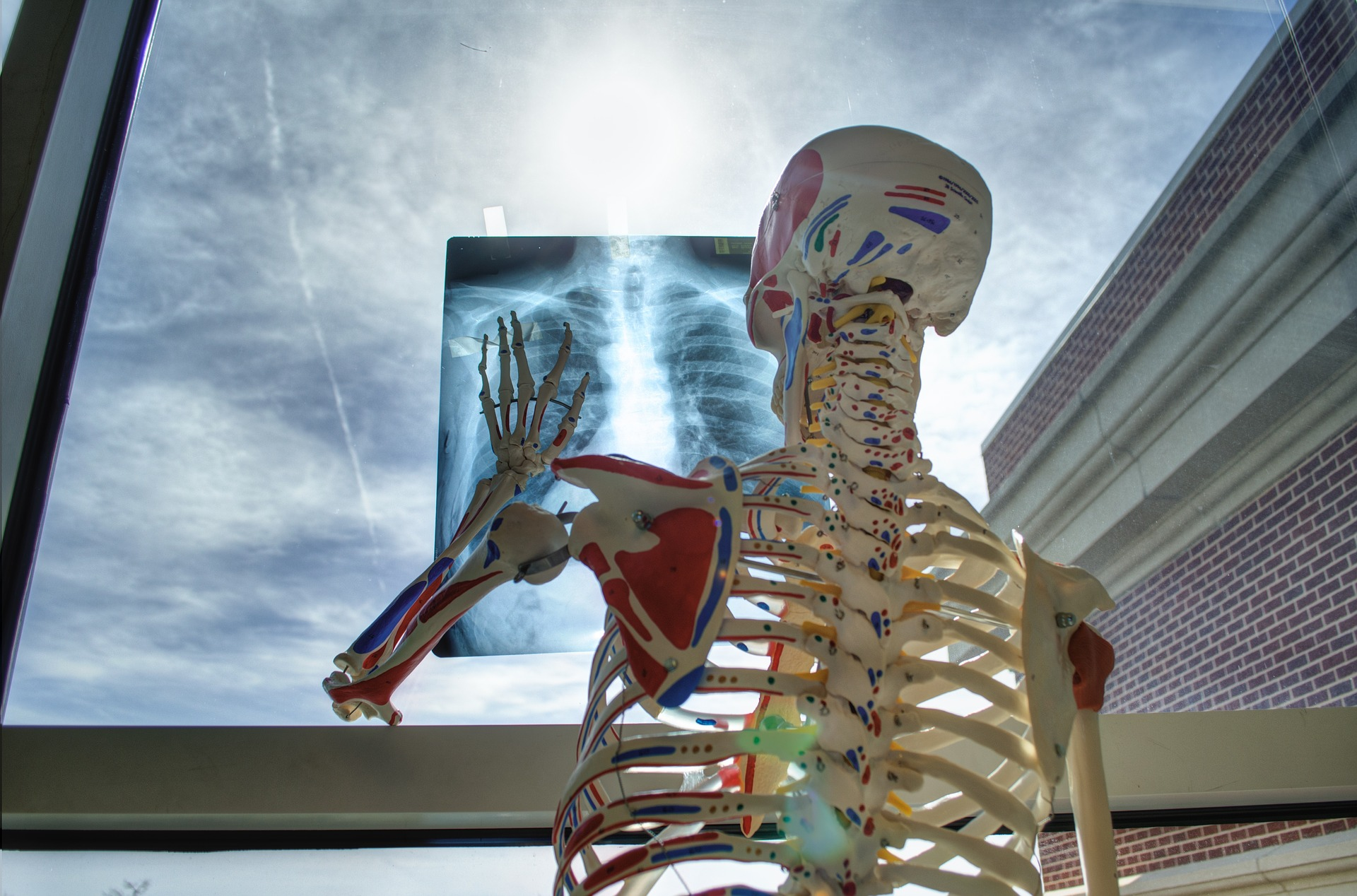 Think of your hospital breastfeeding policy like a skeleton.